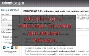 Обзор сайта zakupki.org.ru