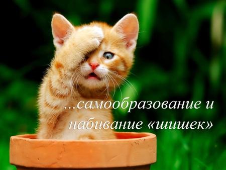 nabil_shishku