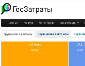 goszatraty1